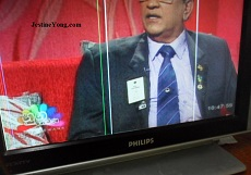 philips lcd tv vertical line